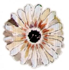 enkelt-blomst1