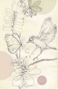 kolibri-e1437920527461
