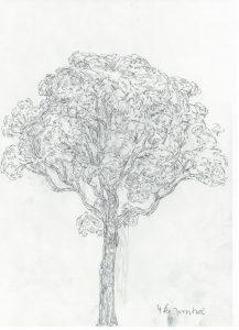 46-ny-jerntræ-e1558855688153